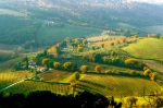 SAN GIMIGNANO, ITALY / TUSCAN SUN